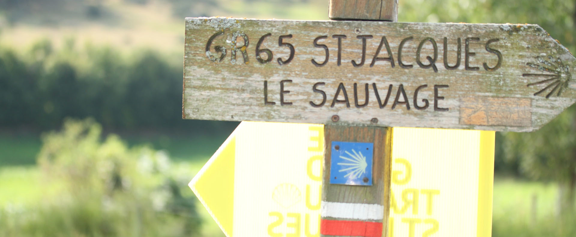 Grand_Trail_SaintJacques_2012_ExtraSports (39)